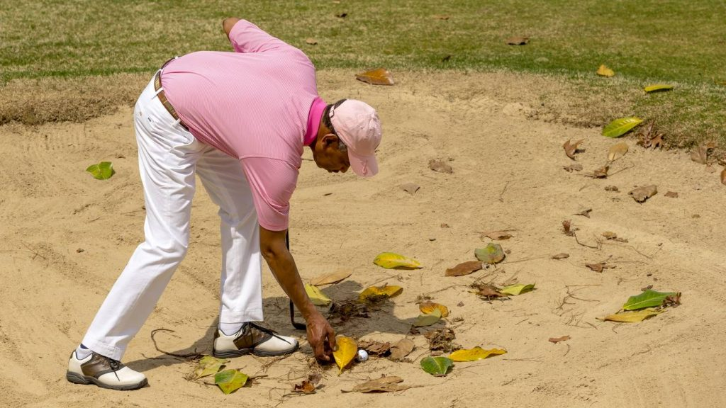 Rules of Golf Loose Impediments